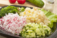 Diced vegetables Stock Photography