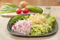 Diced vegetables Royalty Free Stock Photo