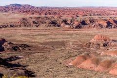 21 dicembre 2014 - foresta petrificata, AZ, U.S.A. Immagine Stock Libera da Diritti
