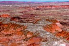 21 dicembre 2014 - foresta petrificata, AZ, U.S.A. Fotografie Stock Libere da Diritti