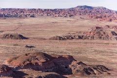 21 dicembre 2014 - foresta petrificata, AZ, U.S.A. Immagine Stock