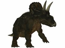 Diceratops-3D Dinosaur Stock Photo