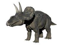 Diceratops dinosaur - 3d render Stock Photo