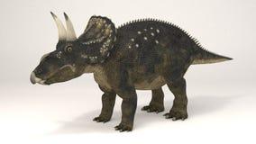 Diceratops-dinosauro royalty illustrazione gratis