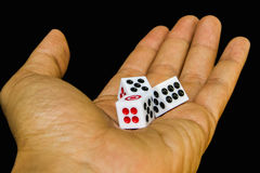 3 dices в руке Стоковое фото RF