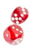 dices красный цвет Стоковое фото RF