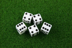 Dices. Five dices on a green poker table Stock Images
