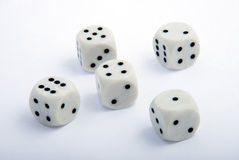 Dices. Five dices isolated yamb game Royalty Free Stock Images