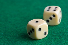 Dices. On a green background Stock Photos