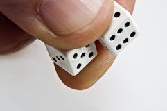 Dices. Isolated closeup of two dice ready to throw Stock Photography