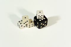 Dices - Gambling, luck and gaming concept. Black and White Dices  on White Background Royalty Free Stock Photos