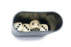 Dices and holder Stock Photo