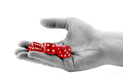 Dices In The Hand Royalty Free Stock Image