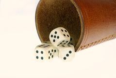 Dices with shaker Royalty Free Stock Images