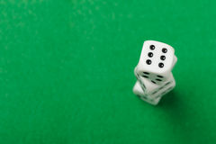 Dices up Royalty Free Stock Images