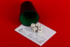 Dices, yahtzee royalty free stock photography