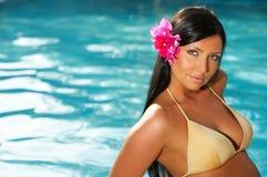 Dicht bij pool Stock Fotografie
