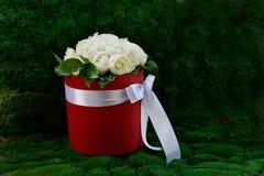 Dicht boeket van pioenrozen in een rode doos Stock Afbeeldingen