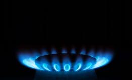 Dicht opbrandt de blauwe vlammen van de gasfornuishaardplaat in dark op een donkere achtergrond Royalty-vrije Stock Afbeelding