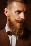 Dicht portret van de mens met baard en snor stock foto's