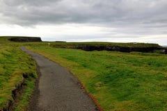 Dichtbij de oceaan - Klippen & aard bij de kust van Ierland stock afbeelding