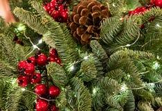 Dichte grüne Niederlassung des hellen Weihnachtshintergrundes des Weihnachtsbaums verziert mit roter Beerenstechpalme und des Keg Lizenzfreie Stockfotos