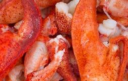 Dichte mening van gekookte zeekreeftstukken royalty-vrije stock foto