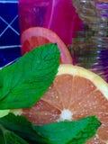 Dichte mening van grapefruit en munt Stock Afbeelding