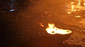 Dichte omhoog loopable van de brandvlam Close-up van brand het branden op zwarte achtergrond in langzame motie stock videobeelden
