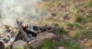 Dichte omhooggaand van de brandplaats met rook en hete drankpot openlucht het kamperen tentvakantie in de herfstreis Dalings zonn stock videobeelden