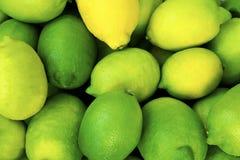 Dichte omhooggaand van de citroen citroenoogst vele gele en groene citroenen stock afbeeldingen