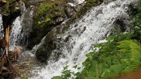 Dichte omhooggaand van de waterstroom bij kleine waterdaling stock fotografie