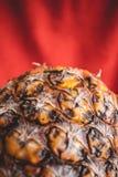 Dichte omhooggaand van een ananas op een rode achtergrond stock foto's