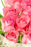 Dichte omhooggaand van een bos van roze rozen Stock Afbeelding