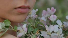 Dichte omhooggaand van het meisjes` s gezicht op een achtergrond van Apple-boom bloemen Royalty-vrije Stock Foto's