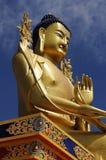 Dichte omhooggaand van het Standbeeld van Boedha Stock Foto's