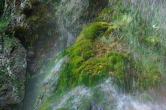 Dichte omhooggaande het mos coveres rots van de waterdaling stock fotografie