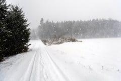 Dichte sneeuwval op een hobbelige weg rond bomen Stock Afbeelding