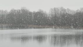 Dichte sneeuwval voor een meer stock video