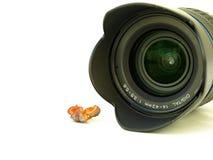 Dichte uo die van cameralens en fruit is ontsproten stock fotografie