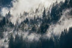 Dichter Morgennebel in der alpinen Landschaft lizenzfreie stockfotografie