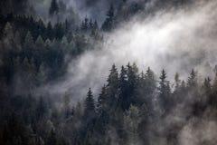 Dichter Morgennebel in der alpinen Landschaft stockbild