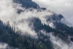 Dichter Morgennebel in der alpinen Landschaft lizenzfreie stockbilder