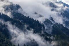 Dichter Morgennebel in der alpinen Landschaft stockbilder