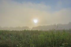 Dichter Nebel Lizenzfreie Stockfotos
