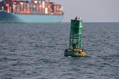 Dichtungen auf Boje mit Containerschiff Lizenzfreies Stockfoto