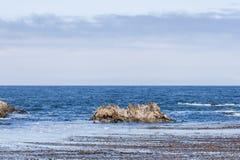 Dichtungs-Felsen mit Seelöwen bei einem 17 Meilen-Antrieb Stockbild