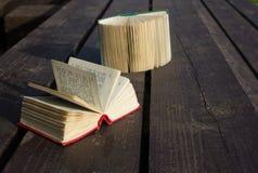 Dicionários de bolso Imagem de Stock Royalty Free