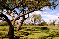 Dickens County Texas, Amerikas förenta stater Arkivfoto