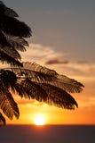 Dickenson海湾,安提瓜岛 库存图片